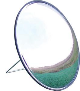 Izzo Swing Mirror