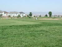 Ute Creek Muni Golf Course, Tee Times &