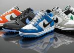 Nike Dunk NG Golf Shoe | Men's Sport Golfing Sneakers w/ Soft Spikes